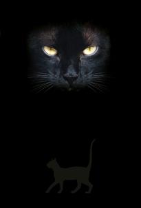 Notitieboekje Cat's Eyes - Zwarte Kat(tenogen)